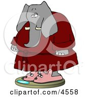 Anthropomorphic Elephant Wearing Bathrobe And Mouse Slippers While Weighting In On A Scale