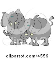 Two Elephants With Tusks Standing Beside Each Other Clipart
