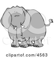 Elephant Clipart by djart