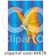 Royalty Free RF Clipart Illustration Of A Beautiful Orange Winged Butterfly Over A Purple And Blue Background