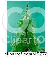 Royalty Free RF Clipart Illustration Of A Lush And Tall Evergreen Pine Tree Growing Over A Wavy Teal Background