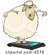 Anthropomorphic Fat Sheep Weighing Itself On A Scale Clipart