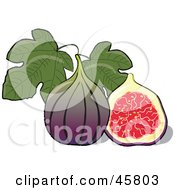 Royalty Free RF Clipart Illustration Of A Halved And Whole Fig Fruit With Leaves