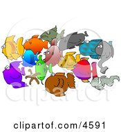 School Of Saltwater Fish And Starfish Clipart