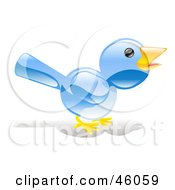 Chatty Blue Bird Chirping