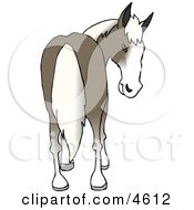 Horses Rear End Clipart