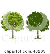 Royalty Free RF Clipart Illustration Of A Digital Collage Of Two Park Trees One In Silhouette