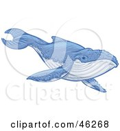 Royalty Free RF Clipart Illustration Of An Endangered Blue Whale Swimming