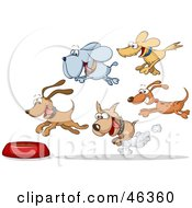 Royalty Free RF Clipart Illustration Of A Group Of Hungry Dogs Racing And Flying Towards A Food Bowl by Holger Bogen