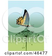 Royalty Free RF Clipart Illustration Of A Majestic Yellow Butterfly Drinking Nectar From A Milkweed Flower