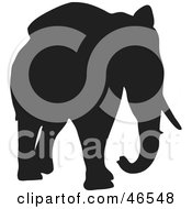 Royalty Free RF Clipart Illustration Of An Elephant Walking Forward Black Silhouette On White by KJ Pargeter