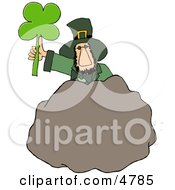 Leprechaun Standing Behind A Bolder With A Four Leaf Clover Leaf