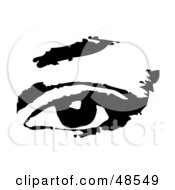 Black And White Human Eye With An Eyebrow