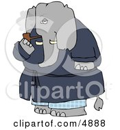 Human-Like Elephant Smoking Tobacco Pipe