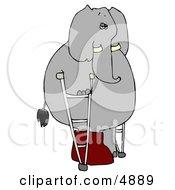 Injured Human Like Elephant Walking Around With A Broken Leg On Crutches Clipart