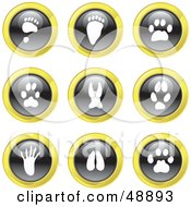Royalty Free RF Clipart Illustration Of A Digital Collage Of Black White And Yellow Animal Track Icons by Prawny