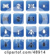 Digital Collage Of Square Blue Black And White Insect Icons