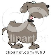 Happy Dog With Tongue Out Clipart