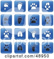 Royalty Free RF Clipart Illustration Of A Digital Collage Of Square Blue Black And White Animal Track Icons by Prawny