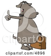 Human Like Dog Hitchhiking For An Automobile Ride Clipart