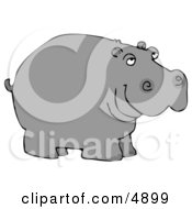 Wild Hippo Water Horse River Horse Clipart