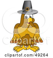 Hawk Mascot Character In A Pilgrim Hat