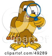Royalty Free RF Clipart Illustration Of A Hawk Mascot Character Using A Magnifying Glass