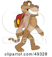 Cougar Mascot Character Walking To School