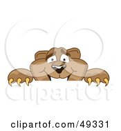 Royalty Free RF Clipart Illustration Of A Cougar Mascot Character Peeking Over A Surface