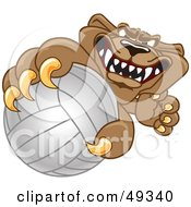 Cougar Mascot Character Grabbing A Volleyball