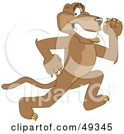 Cougar Mascot Character Running