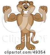 Cougar Mascot Character Flexing