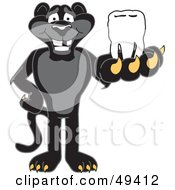 Black Jaguar Mascot Character Holding A Tooth
