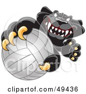 Royalty Free RF Clipart Illustration Of A Black Jaguar Mascot Character Grabbing A Volleyball