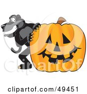 Royalty Free RF Clipart Illustration Of A Black Jaguar Mascot Character With A Halloween Pumpkin
