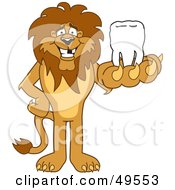 Lion Character Mascot Holding A Tooth