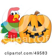 Royalty Free RF Clipart Illustration Of A Macaw Parrot Character Mascot With A Pumpkin by Toons4Biz
