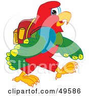 Macaw Parrot Character Mascot Walking To School
