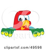 Macaw Parrot Character Mascot Looking Over A Surface