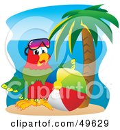 Macaw Parrot Character Mascot With A Beach Ball
