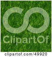 Royalty Free RF Clipart Illustration Of A Seamless Green Grass Texture