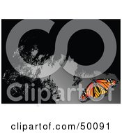 Royalty Free RF Clipart Illustration Of A Monarch Butterfly On A Reflective Gray And Black Surface