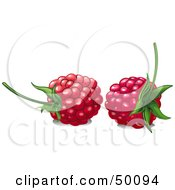 Royalty Free RF Clipart Illustration Of Two Ripe Red Raspberries With Stems by Pushkin
