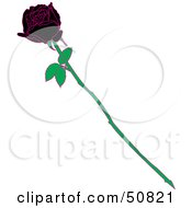 Royalty Free RF Clipart Illustration Of A Single Black Rose With White Rips On The Petals by Cherie Reve