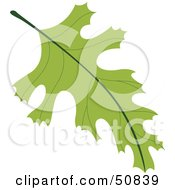 Royalty Free RF Clipart Illustration Of An Autumn Leaf Version 3 by Cherie Reve