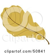 Royalty Free RF Clipart Illustration Of An Autumn Leaf Version 2 by Cherie Reve