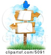 Bird Perched On A Blank Sign With Arrows Pointing In Opposite Directions