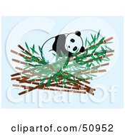 Royalty Free RF Clipart Illustration Of A Giant Panda Sleeping In Bamboo by Cherie Reve