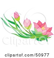 Royalty Free RF Clipart Illustration Of Pink Oriental Flowers And Buds by Cherie Reve