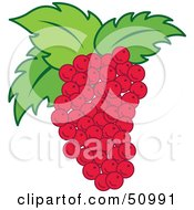 Royalty Free RF Clipart Illustration Of A Blunch Of Fresh Red Grapes With Green Leaves by Cherie Reve